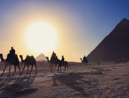 How a visiting son handled health scare in Egypt